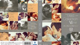 The Best Collection 6